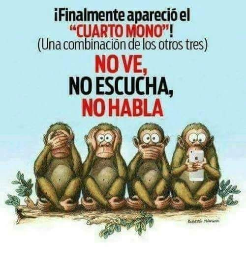 cuarto mono